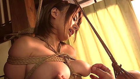Rika Hoshimi
